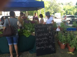 Cape Cod Farmer's Markets